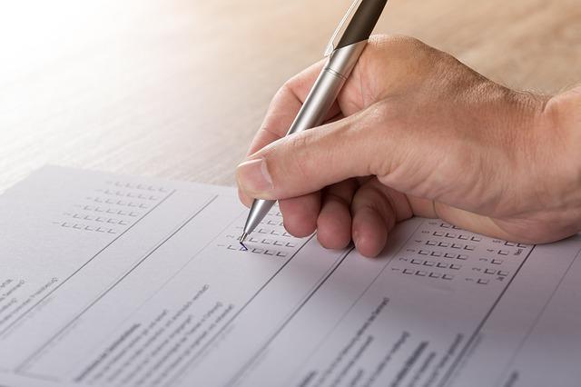 gudagnare con i sondaggi online